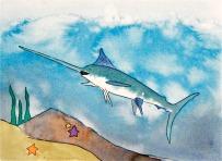 Slumbering Sea, Marlin