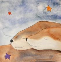 Slumbering Sea, Seals