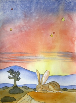 Dreamy Desert, Jack Rabbit