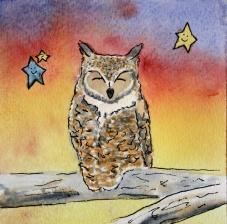 Dreamy Desert, Owl