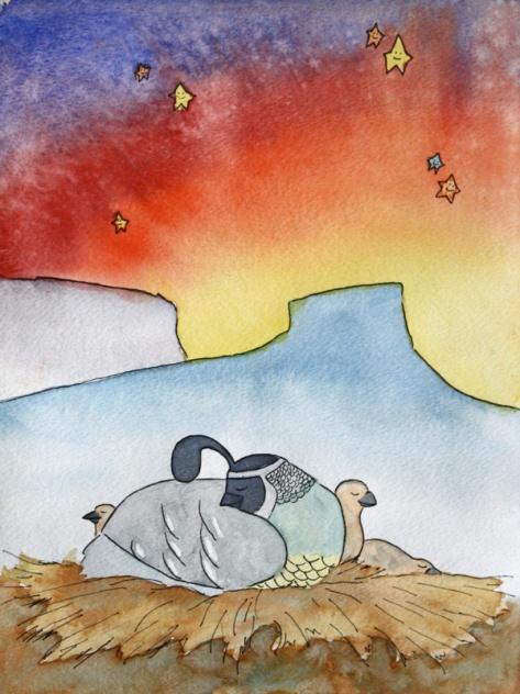 Dreamy Desert, Quail