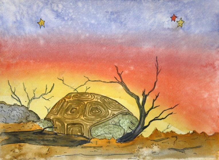 Dreamy Desert, Tortoise
