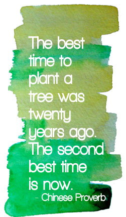 The best time to plant a tree was twenty years ago. The second best time is now. - Chinese Proverb